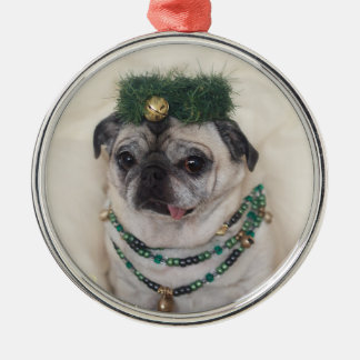 Pug in Christmas Bells Ornament