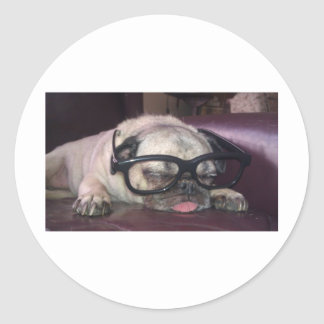 Pug In Glasses Stickers