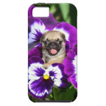 Pug in Pansies iPhone 5 Cover