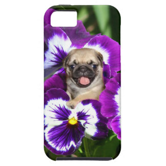 Pug in Pansies iPhone SE/5/5s Case