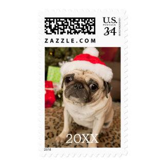 Pug in Santa Claus Hat sitting on carpet Postage