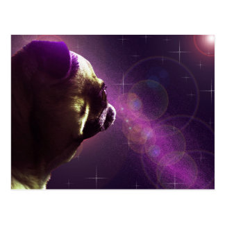 Pug in Space Postcard