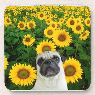 Pug in sunflowers drink coaster