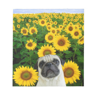 Pug in sunflowers notepad