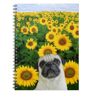 Pug in sunflowers spiral note books