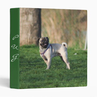 Pug in the park binder