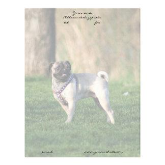Pug in the park letterhead