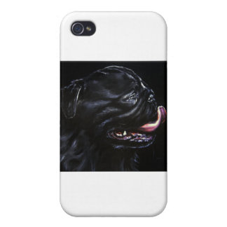 Pug Cover For iPhone 4