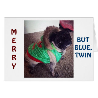 """PUG IS """"MERRY"""" BUT """"BLUE"""" CHRISTMAS WITHOUT """"TWIN"""" GREETING CARDS"""