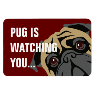Pug Is Watching Magnet