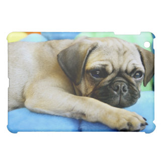 Pug laying on pillows cover for the iPad mini