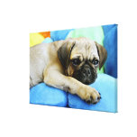 Pug laying on pillows gallery wrap canvas