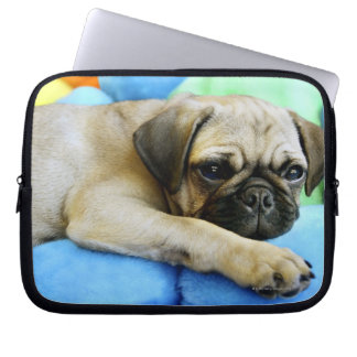 Pug laying on pillows laptop computer sleeves