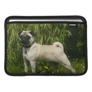 Pug Lookign at Camera MacBook Air Sleeve