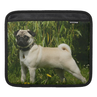 Pug Lookign at Camera Sleeve For iPads