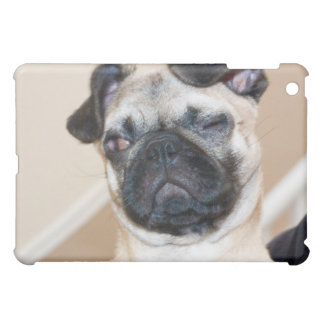 Pug looking with one eye closed iPad mini cases