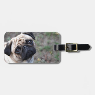 PUG TAG FOR BAGS