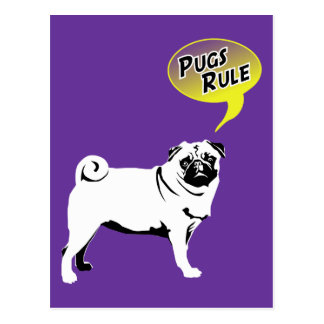 Pug Mops Postcard