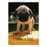 Pug Needs A Hug Cards