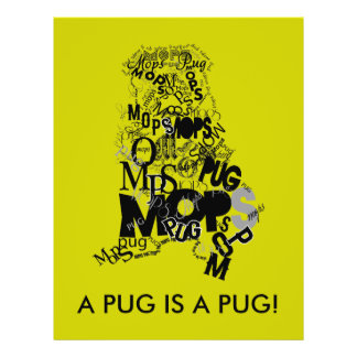 Pug of types flyer