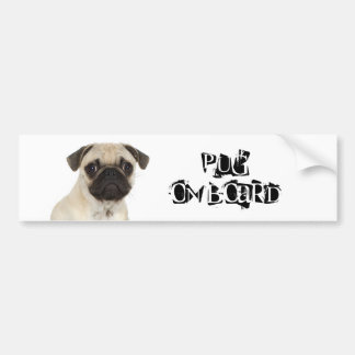 Pug on Board Bumper Sticker