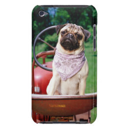 Pug on lawnmower wearing bandana barely there iPod cover