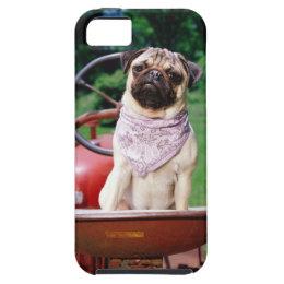 Pug on lawnmower wearing bandana iPhone SE/5/5s case