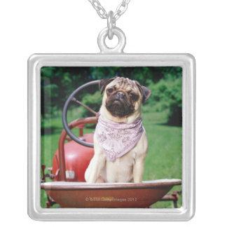 Pug on lawnmower wearing bandana pendants