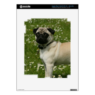 Pug Playing in Flowers Decal For iPad 3