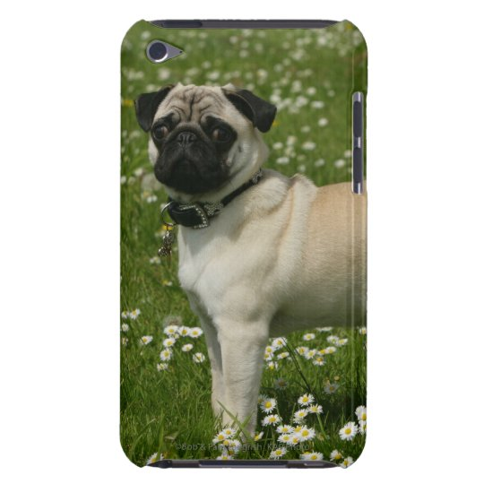 Pug Playing in Flowers iPod Touch Case