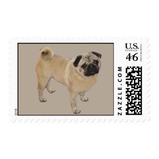 Pug Postage Stamp