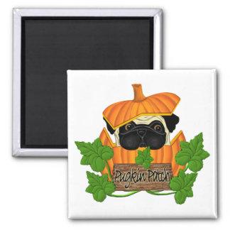 Pug Pumpkin Patch 2 Inch Square Magnet