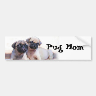Pug puppies car bumper sticker