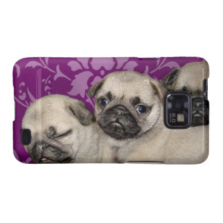 Pug puppies galaxy SII cases