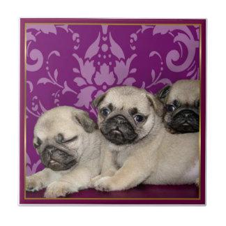 Pug Puppies Ceramic Tile