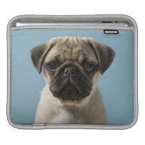 Pug Puppy Against Blue Background Sleeve For iPads