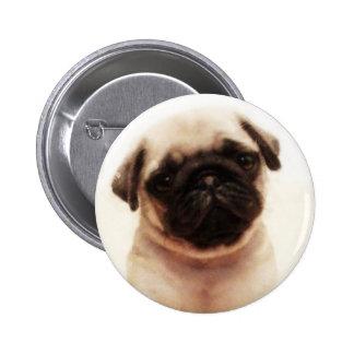 Pug puppy button