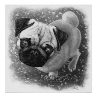 Pug Puppy Dog Art Poster