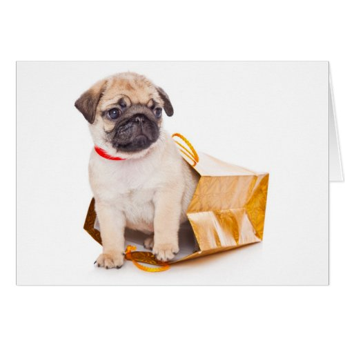 Pug Puppy Dog Blank Greeting Note Card