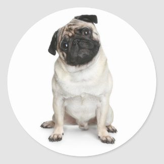 Pug Puppy Dog Greeting Stickers / Labels