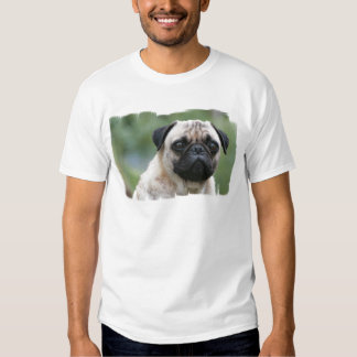 Pug Puppy Dog Men's T-Shirt