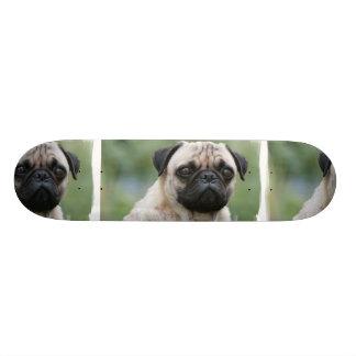 Pug Puppy Dog Skateboard