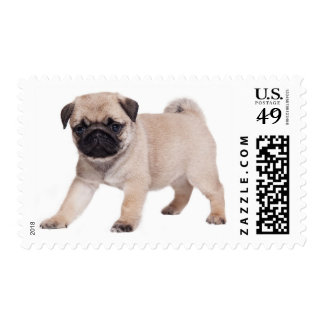 Pug Puppy Dog Tan And Black Canine Postage Stamps