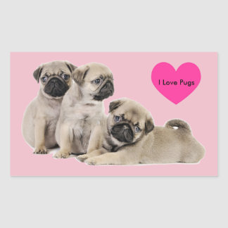 Pug Puppy Dogs Rectangle Stickers