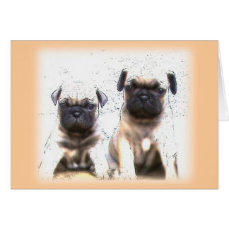Pug puppy greeting card