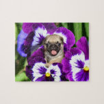 Pug puppy in pansies 8x10 Photo Puzzle with Tin