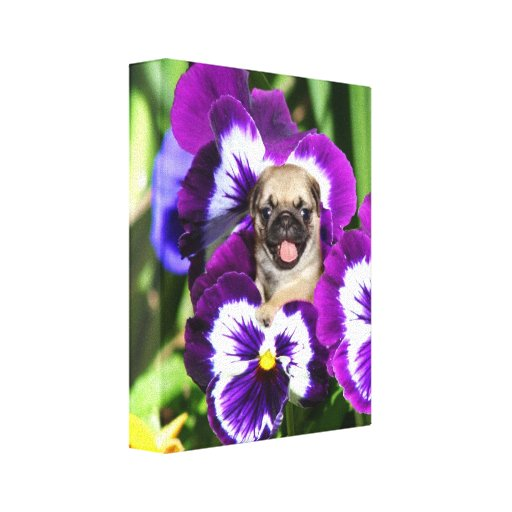 Pug puppy in pansies Canvas print