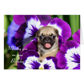 Pug puppy in pansies card