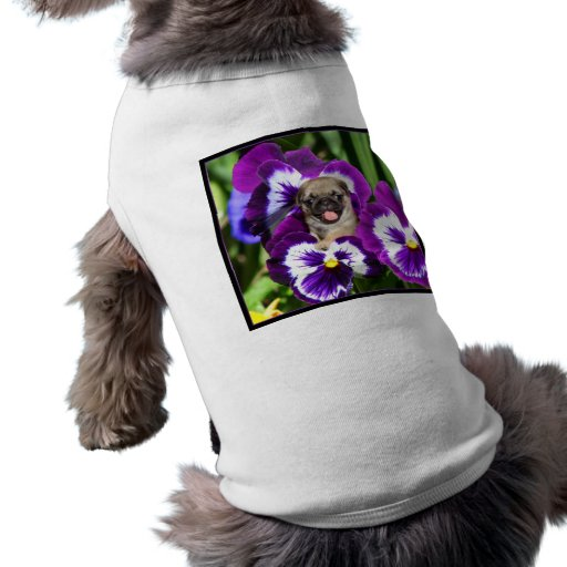 Pug puppy in pansies pet t-shirt