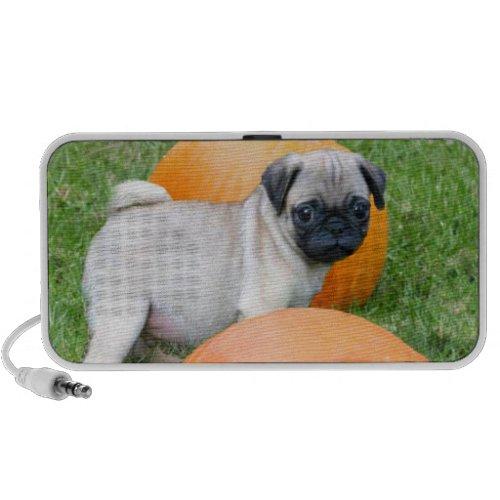 Pug puppy in pumpkins doodle speaker doodle